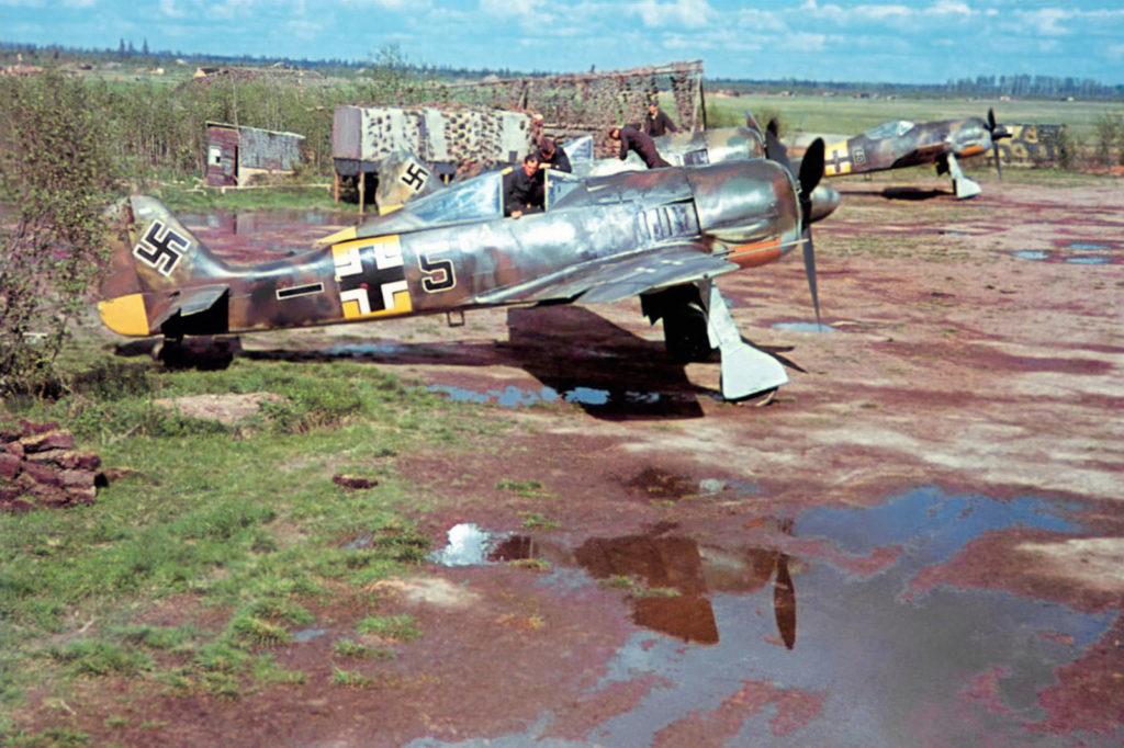 Focke-Wulf Fw.190 A-5 5./JG54 Сиверская 1943 год